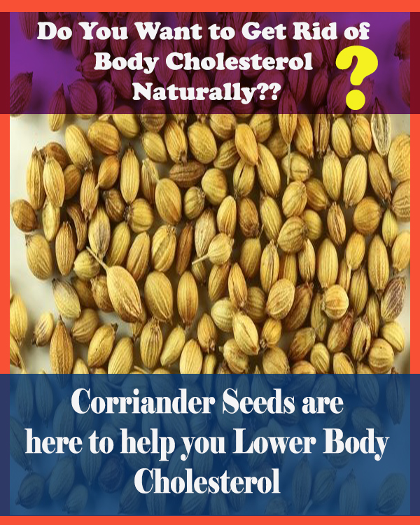 corriander for lowering cholesterol