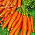 Vitamin E in carrots dehydrated